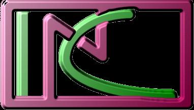 Logo of the Institut für Nichtklassische Chemie